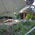 Stuttgart, 23.08.2012 Nachdem bereits am 16.08.2012 unter Polizeischutz abgesperrt wurde … Bericht von Peterp:  … läuft also nun seit heute Morgen 8 Uhr der Abbruch des Landespavillons durch die […]