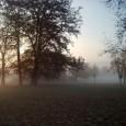Neue Seite der Infooffensive:Der Rosenstein – mehr als ein Park. Der Rosensteinpark ist ein erhaltenswerter wichtiger Teil Stuttgarts. Diesen Teil kann man über diese Seite kennen lernen. Die Seite regt […]