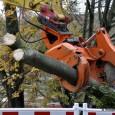 """Der """"Status Quo"""" im Rosensteinpark Die längst bekannten Mehrkosten beim Immobilienprojekt Stuttgart 21 haben aktuell das Thema um das Fiasko beim Hauptstadtflughafen Berlin (BER) aus den Schlagzeilen verdrängt. Und das […]"""