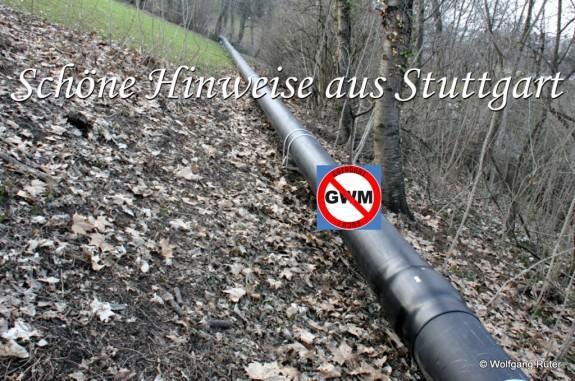 Vom Tunnelportal bis zur Eisenbahnbrücke über den Neckar verläuft die zu große Überschussleitung am Hang. Dafür wurden etliche Bäume und Sträucher gerodet.