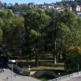 Am Dienstag den 14. Mai fand im Gemeinderat eine öffentliche Sitzung des Ausschusses für Umwelt und Technik statt, in der weitere Baumfällungen im Rosensteinpark und im Gleisvorfeld des Stuttgarter Hauptbahnhofs […]