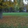 Strategisch geschickt fiel der Info-Termin zur Neu- « Gestaltung » des Uni-Parks auf den ersten Tag der Baumfällungen im Rosensteinpark. Wie die StZ im Juni berichtete , geht es auch hier 83 alten Bäumen an den Kragen.