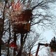 In den letzten Jahren habe ich schon des öfteren über die aktiven Naturschützer rund um und für den Hambacher Forst berichtet. Der Konzern RWE möchte in diesem Landstrich bei Köln […]