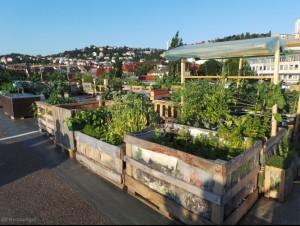 parkdeck gardening a 1
